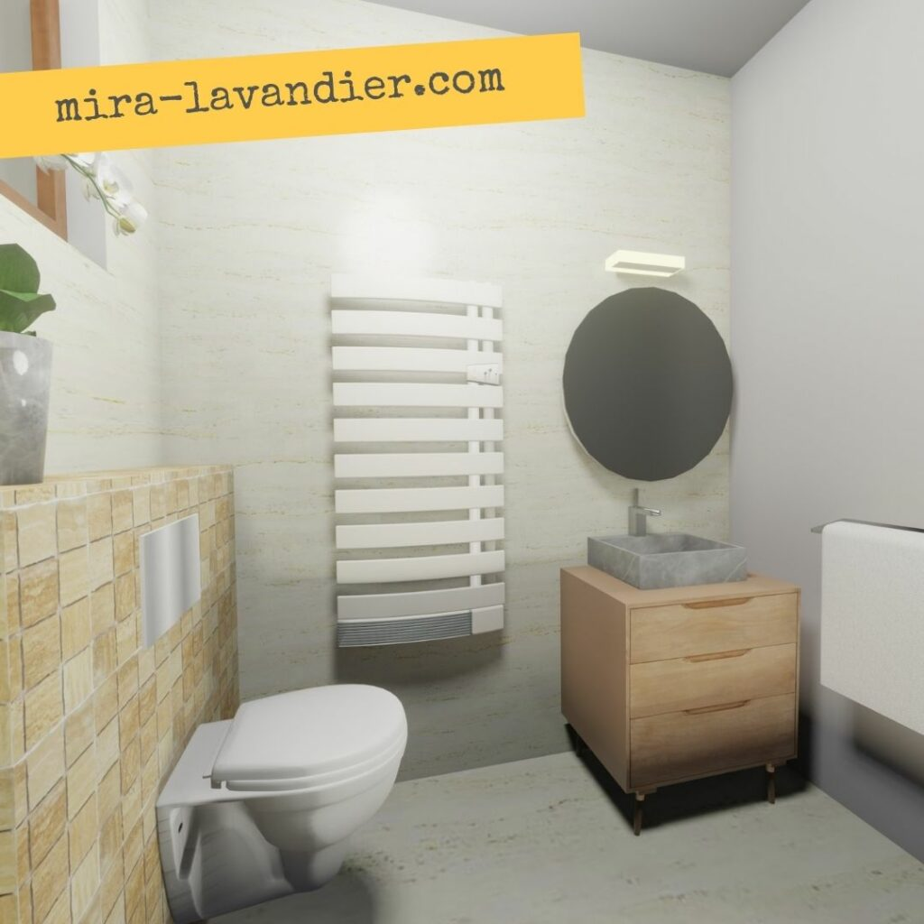 vue 3D salle de bain 3m2 avec WC